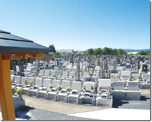 広大な敷地に3000区画以上の建墓実績と桜を愉しむ霊園